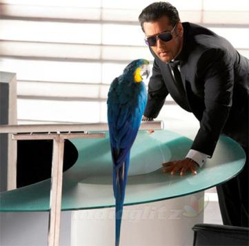 What-Is-New-In-Bigg-Boss-6-Salman-Khan