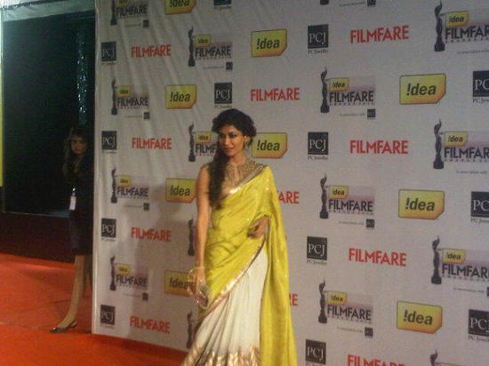 Chitrangada-Singh-Filmfare Awards 2013