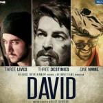 David-Hindi-Movie-Box-Office